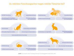 Grafik: Tierversuche und Forschungsbereiche