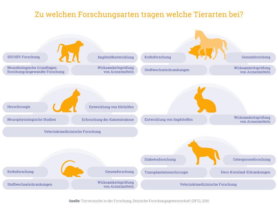 Forschungs_Tierarten