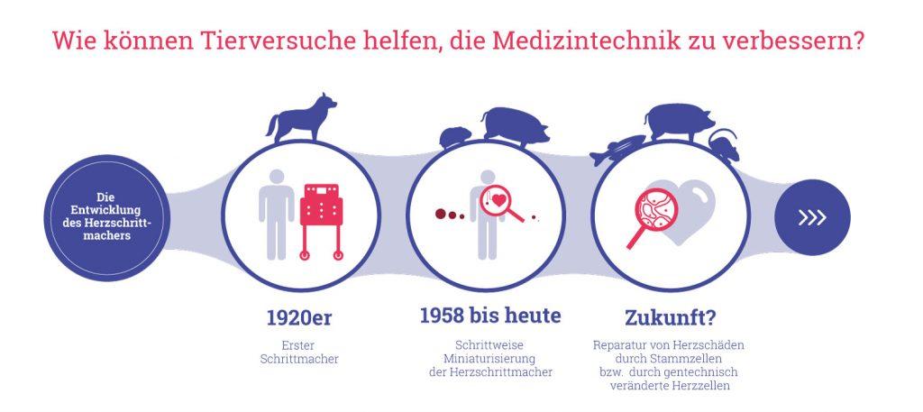 Grafik: Wie können Tierversuche helfen, die Medizintechnik zu verbessern? Beispiel: Herzschrittmacher