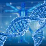Die flinke Gen-Schere CRISPR/Cas9 verleiht neuen Therapien Flügel