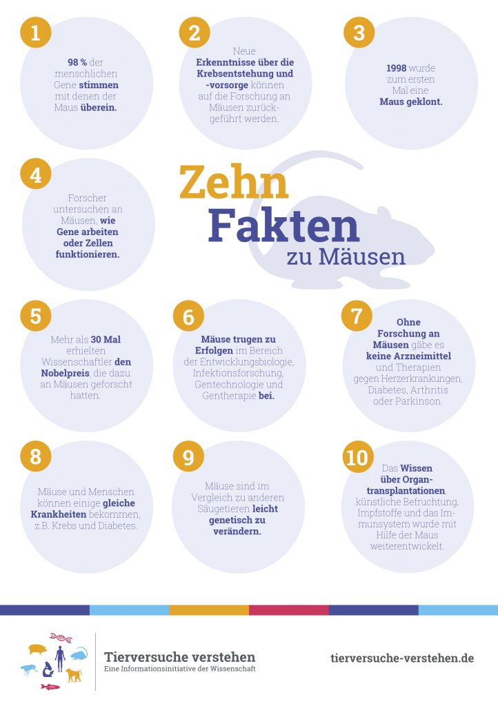 10_fakten_maus