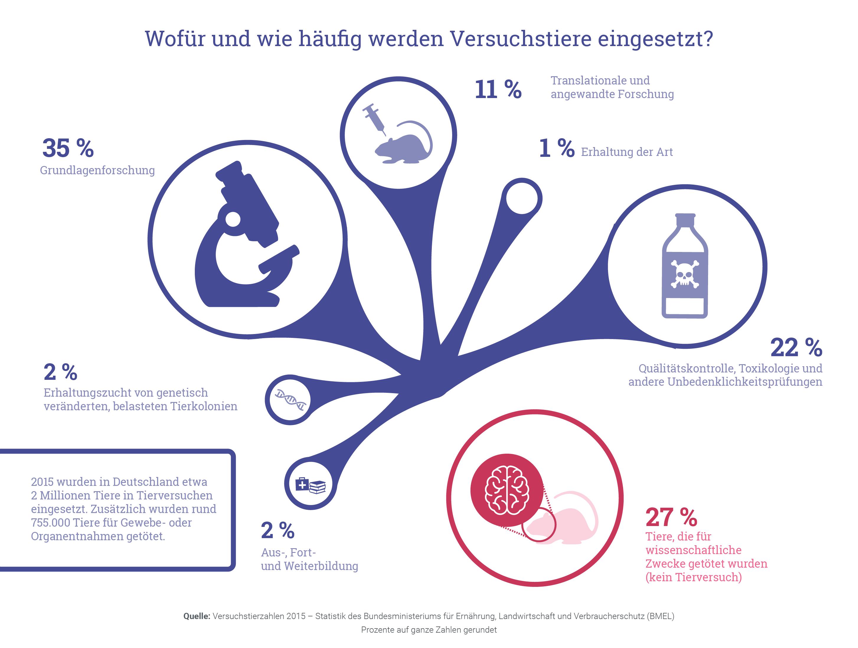 Grafik: Wofür und wie häufig werden Versuchstiere verwendet?