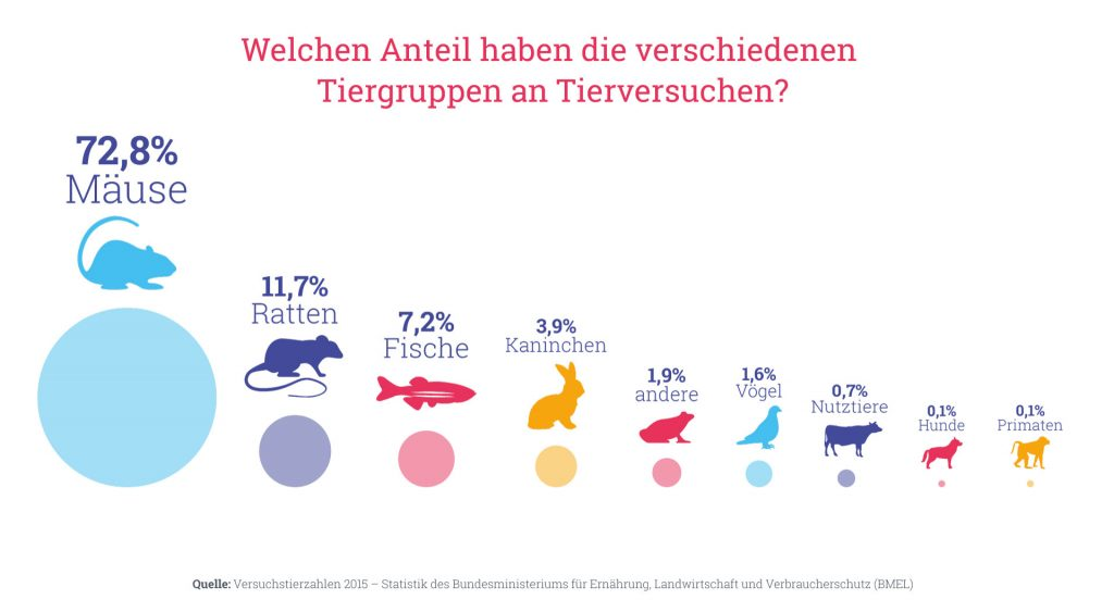 Grafik: Wrelchen Anteil haben die verschiedenen Tiergruppen an Tierversuchen?