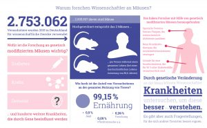 Grafik: Warum forschen Wissenschaftler an Mäusen?