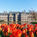 Tierversuche in den Niederlanden – kompletter Ausstieg nicht möglich
