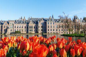 Tierversuche in den Niederlanden