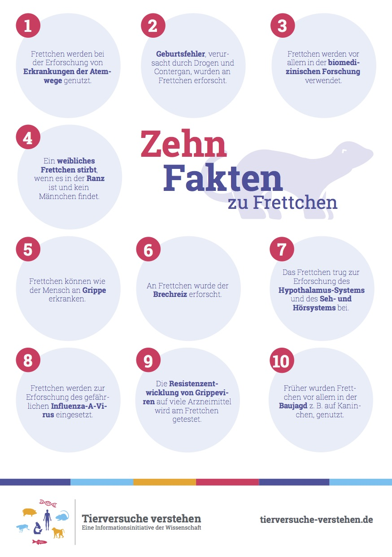 Großzügig Seltsame Anatomie Fakten Zeitgenössisch - Menschliche ...