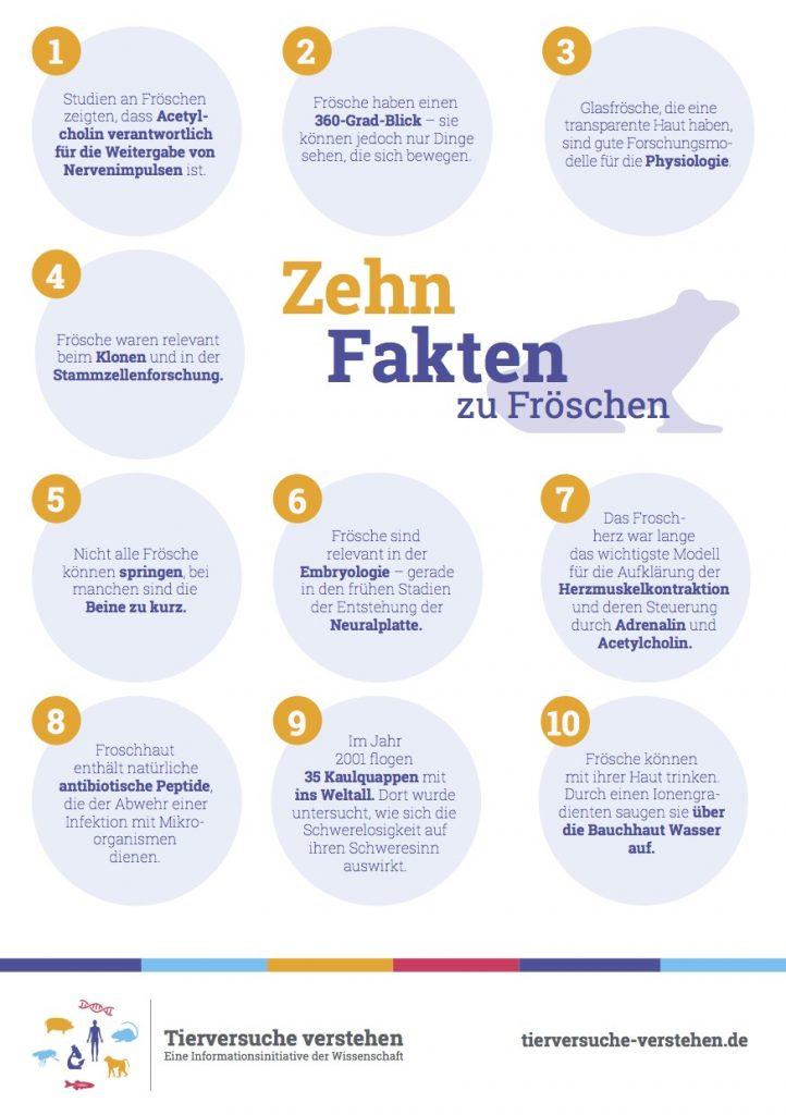 10 Fakten: Frösche