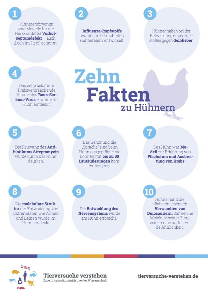 10 Fakten zu Hühnern