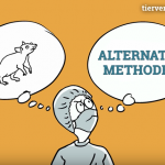 Animationsfilm: Alternativmethoden
