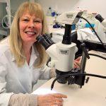 Wohlstandserkrankungen – Tierversuche helfen bei der Ursachenforschung