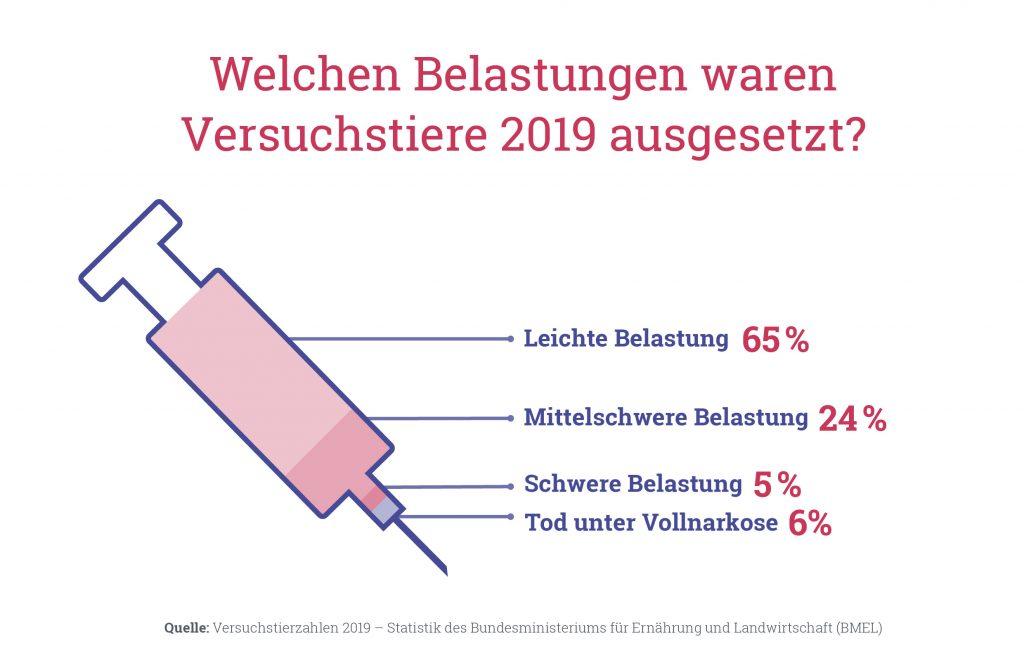 Versuchstierzahlen 2019