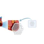 Gebrochene Herzen reparieren – Geschichte des Herzpflasters
